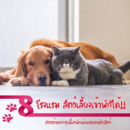 8 โรงแรม สัตว์เลี้ยงเข้าพักได้!! สวรรค์ของการเที่ยวพักผ่อนของคนรักสัตว์